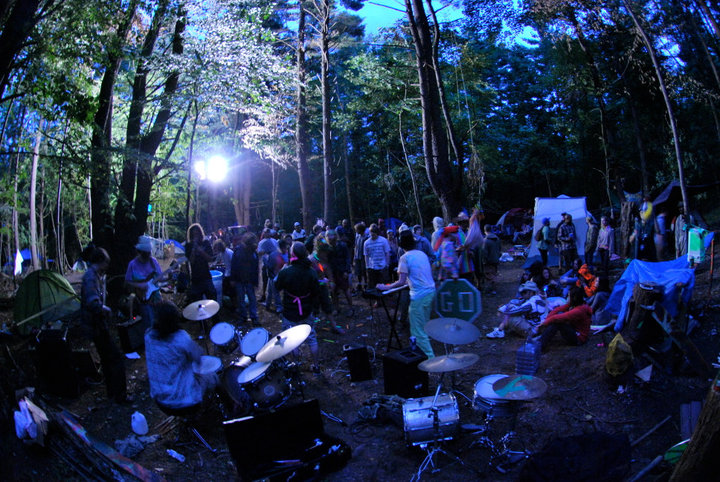 Woods Party Treeshurts S Blog